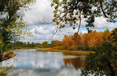 Free Images Tree Water free images landscape tree nature forest branch