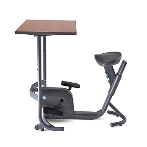 lifespan unity bike desk lifespan unity bike desk exercise bike reviews and ratings
