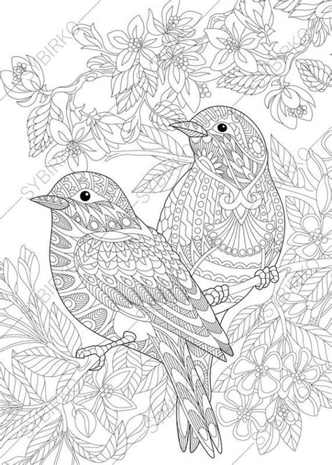 bird design coloring page 1648 best coloring pages images on pinterest pyrography