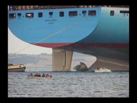 boat parts walmart big ship emma maersk wal mart gets its stuff from china