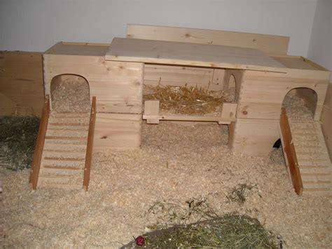 meerschweinchen haus bauen meerschweinchen paradies tiergehege