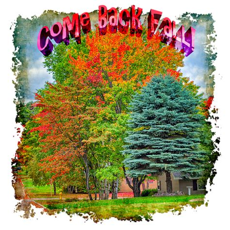in the fall they come back books come back fall t shirt for sale by m bailey