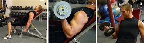 seated barbell curl on decline bench seated incline bench alternating dumbbell curls second