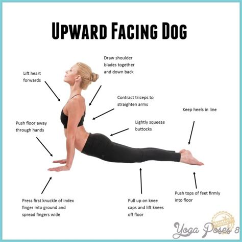 upward facing upward facing pose poses yogaposes 174