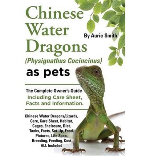 dragons with pets books water dragons physignathus cocincinus as pets