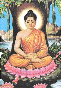 the autistic buddha my unconventional path to enlightenment books socialstuds academy south asian thinking