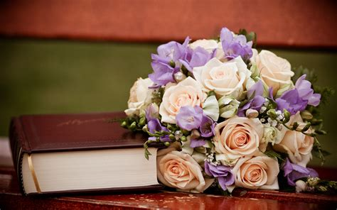 flower picture book books and flowers and rainbows