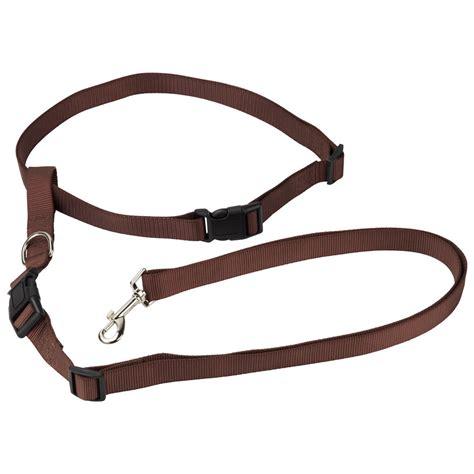 waist leash bunty adjustable free running waist belt lead leash ebay