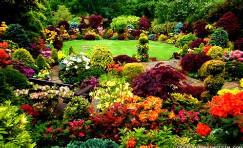 Best Flower Gardens In The World Best Flowers In The Best Flower Garden In The World