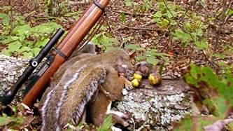 free on squirrel opener saturday aug 22 rhea