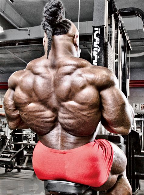 tree back muscles the predator s greene back workout flex