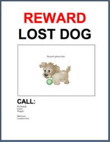 lost pet template 301 moved permanently