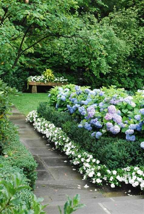 Garden Border Planting Ideas Accents In The Garden With Hydrangea Fresh Design Pedia