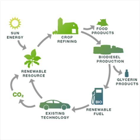 biofuel adalah biodiesel dari minyak jelantah waste cooking oil sebagai