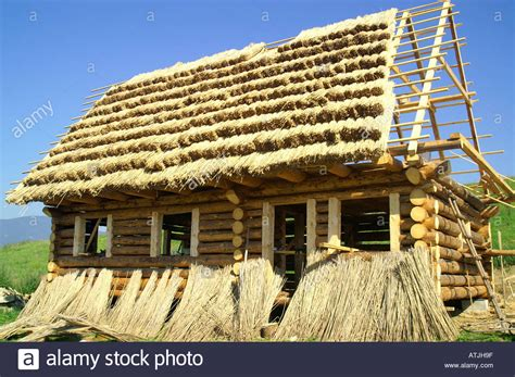 straw thatched roof straw roof straw thatched roof