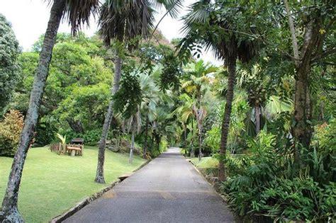 Seychelles National Botanical Gardens Botanical Garden Seychelles Picture Of Seychelles