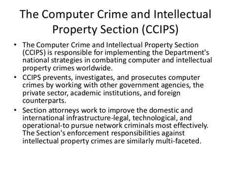 computer crime and intellectual property section cyber space
