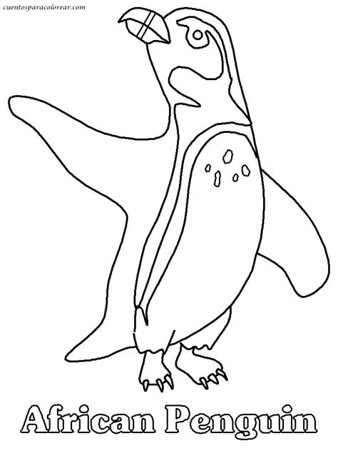 humboldt penguin coloring page dibujos para colorear ping 252 inos
