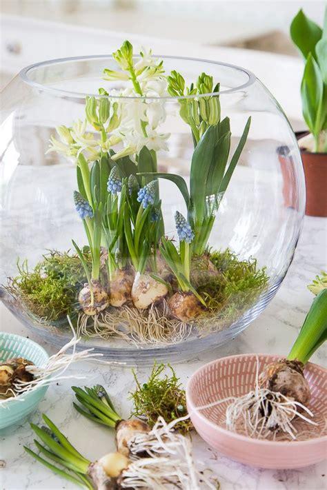 Kerzenständer Kleine Kerzen by Fr 252 Hlingserwachen Mit Blumenzwiebeln Dekorieren Deko