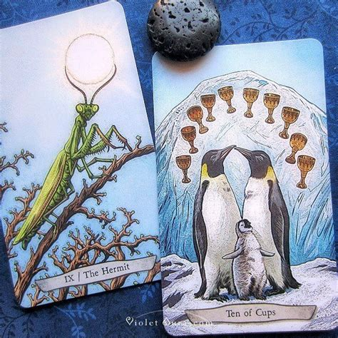 libro animal totem tarot the hermit and ten of cups cards from the animal totem tarot by leeza robertson photo 169 www
