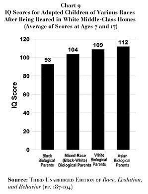average iq by race chart simple solutions for planet earth and humanity iq and