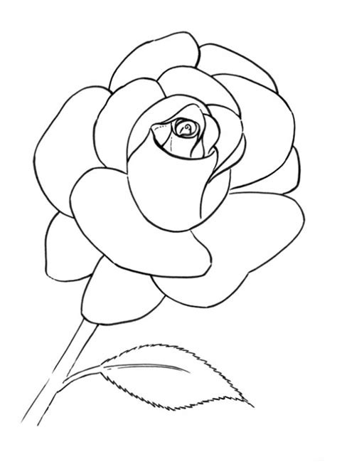 rose petal coloring page free 12 flower petals coloring pages