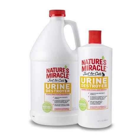 how to eliminate urine odor cat urine carpet cleaning solution carpet menzilperde net