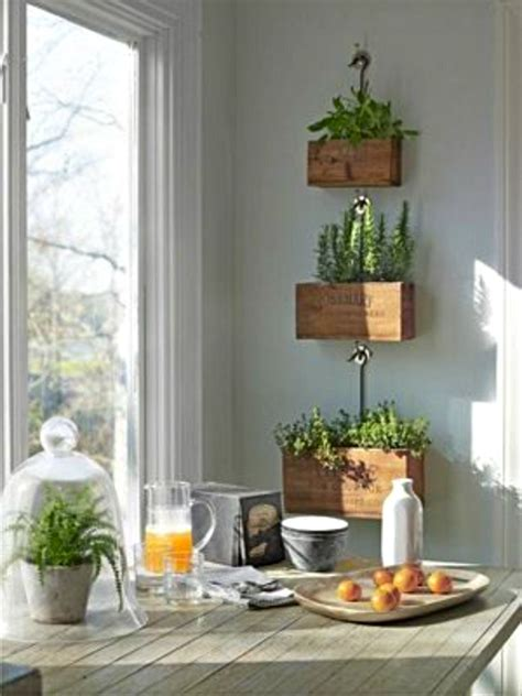 hanging herb garden indoor indoor herb garden ideas creative juice