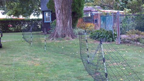 backyard electric fence my alternative to electric fences backyard chickens