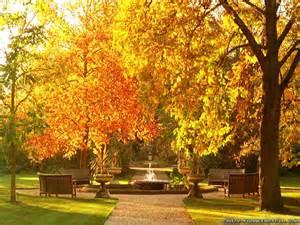 garden autumn wallpaper 1024x768 30369