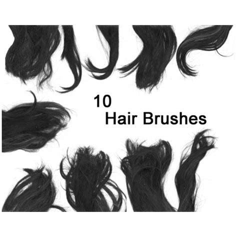download hair brushes for gimp 25 free photoshop hair brushes sets to free download