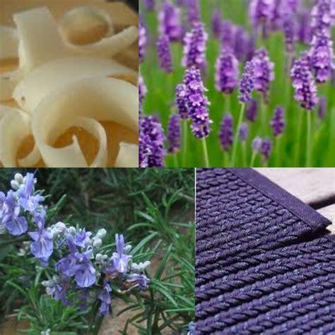 pulizia tappeti bicarbonato ricette bio per la pulizia di tappeti e moquette casa