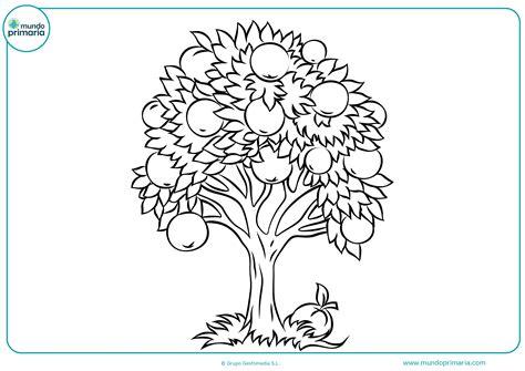 imagenes de arboles otoñales para pintar colorear dibujo 225 rbol infantil mundo primaria