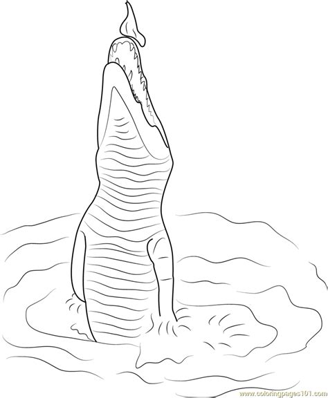crocodile coloring pages jumping crocodile coloring page free crocodile coloring