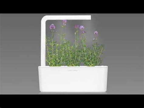 grow your very own smart garden with click grow lavender grow fresh food at home click grow