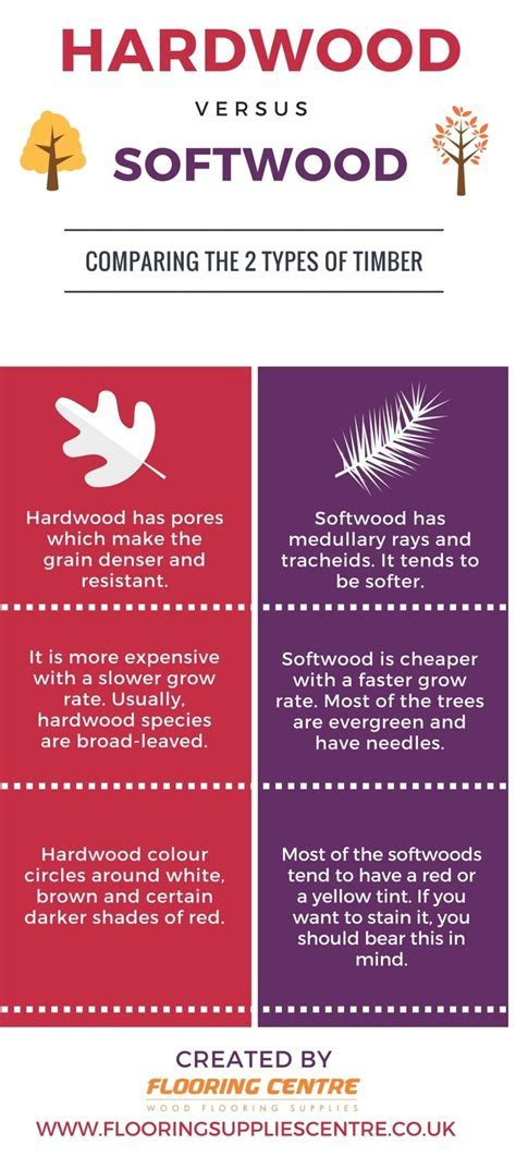 Differences Between Softwood and Hardwood Trees   Flooring