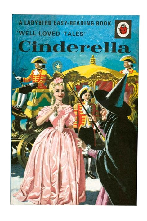 cinderella book report book report of cinderella essay academic writing service
