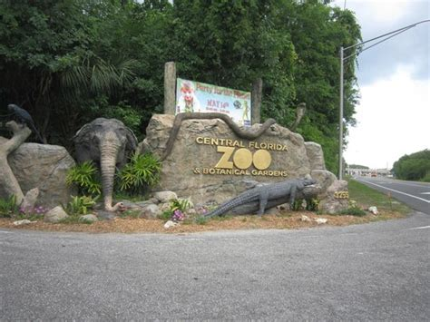 Central Florida Zoo Botanical Gardens Sanford Fl At The Zoo Picture Of Central Florida Zoo Botanical Gardens Sanford Tripadvisor