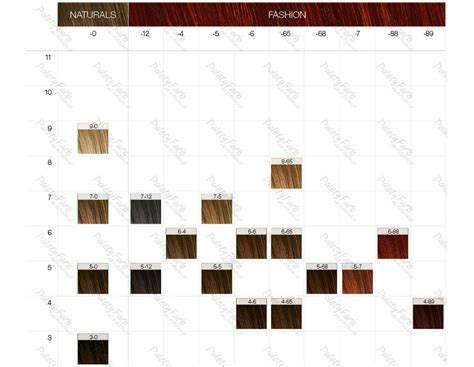 igora color paleta schwarzkopf igora color10 paleta kolor 243 w farb do