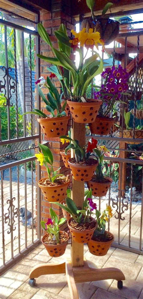amazing ideas  indoor herb gardens orchid house