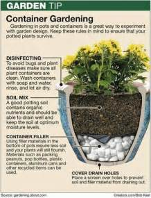 25 best ideas about container gardening on pinterest growing vegetables gardening and