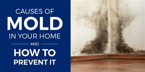 mold   home   spot prevent mold
