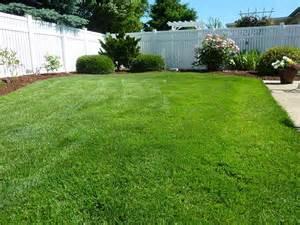 put grass in backyard free photo back yard grass vinyl fence free image on