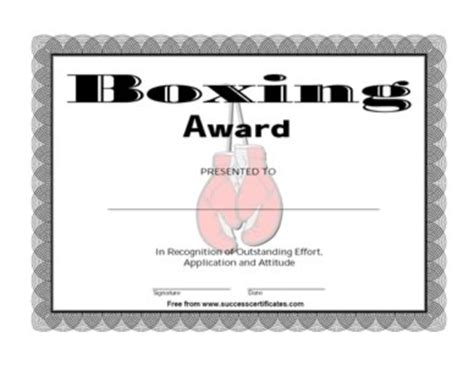 Certificate For Outstanding Performance In Boxing