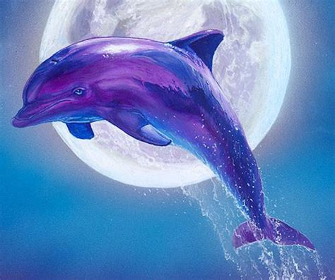 Home Decor Wall Sculptures by Dolphin Art Print Dolphins Art Dolphin Wall Airstrike
