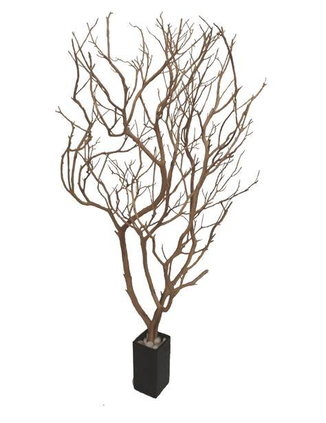 manzanita branches from artisans manzanita
