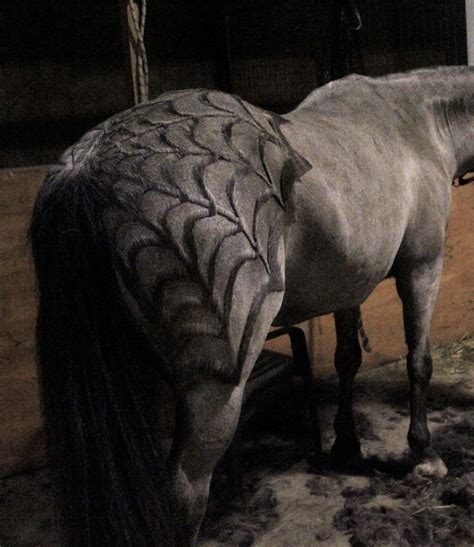 pattern web clips 17 best images about horsey halloween on pinterest