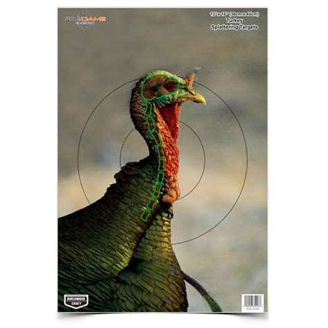 printable turkey archery target birchwood casey 174 splattering targets shoot n c 174 dirty