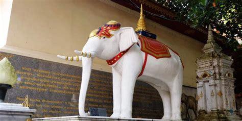 Gajah Putih mengapa thailand dijuluki quot negeri gajah putih quot kompas