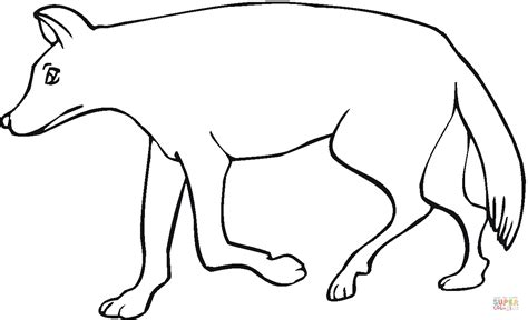 coyote 7 coloring page free printable coloring pages